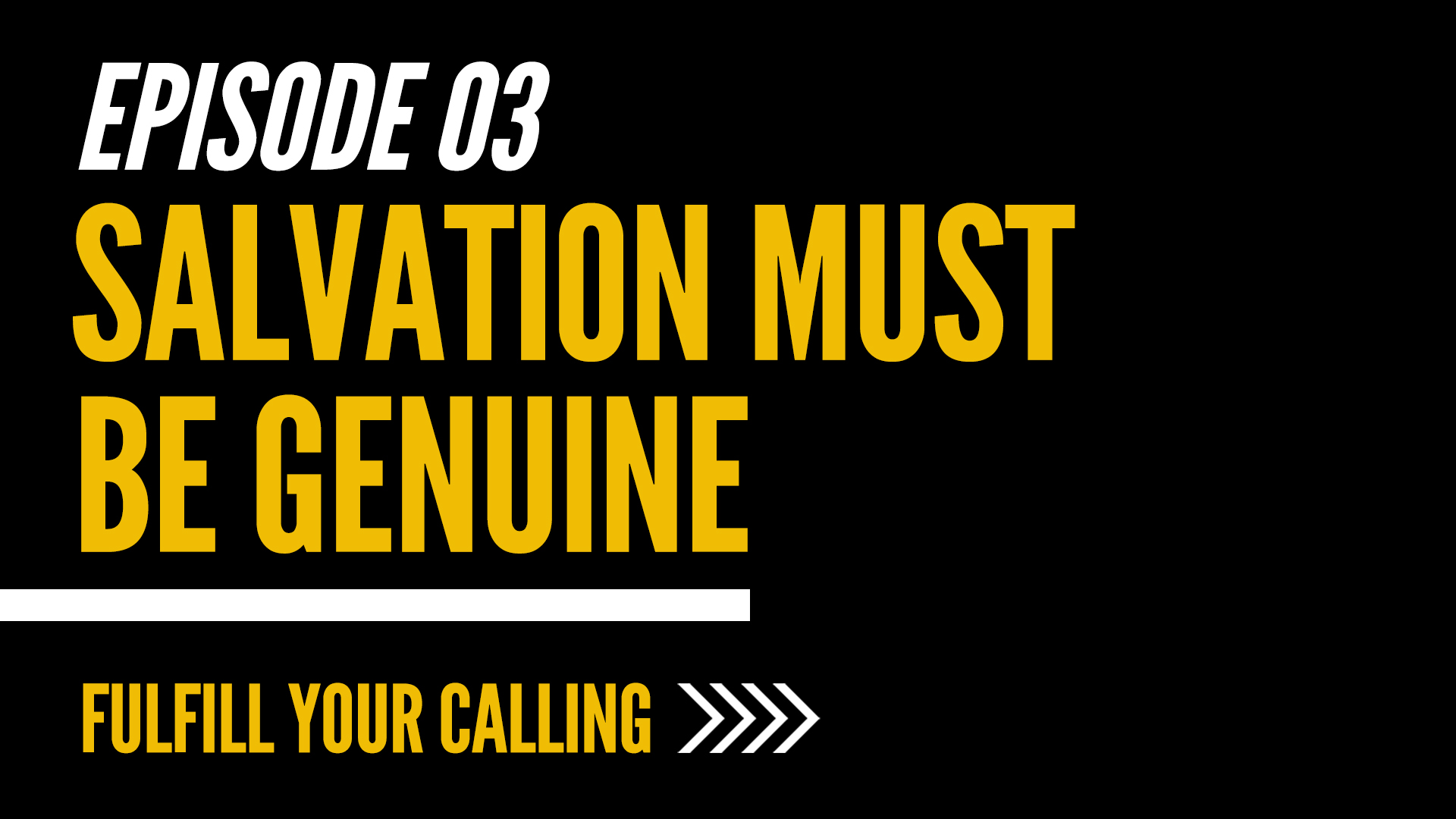 How to Fulfill Your Calling - Episode 3 with David Steele